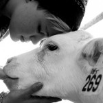 The Negative Connotation of the Animal Rights Community Plus Inspiration (Part 1)