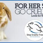 Why Bunnies Love Queen Helene